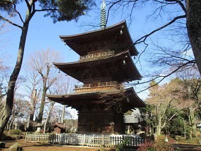 s img 9264 2 lb - 豪徳寺の招き猫は通販できる?猫好きには必見のお寺です!