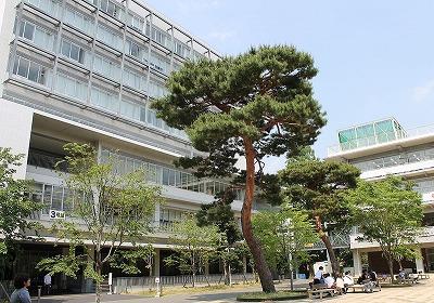 s 1200px Seijouniv2012055 - 成城大学学園祭!2018年の芸能人ゲストは千葉雄大さんに決定!